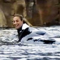 Niño traumatizado que miró la muerte de la entrenadora, demanda a SeaWorld