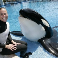 """Tres orcas """"enloquecidas por el cautiverio"""" se unieron para matar a una estudiante de 20 años en un horrible ataque"""